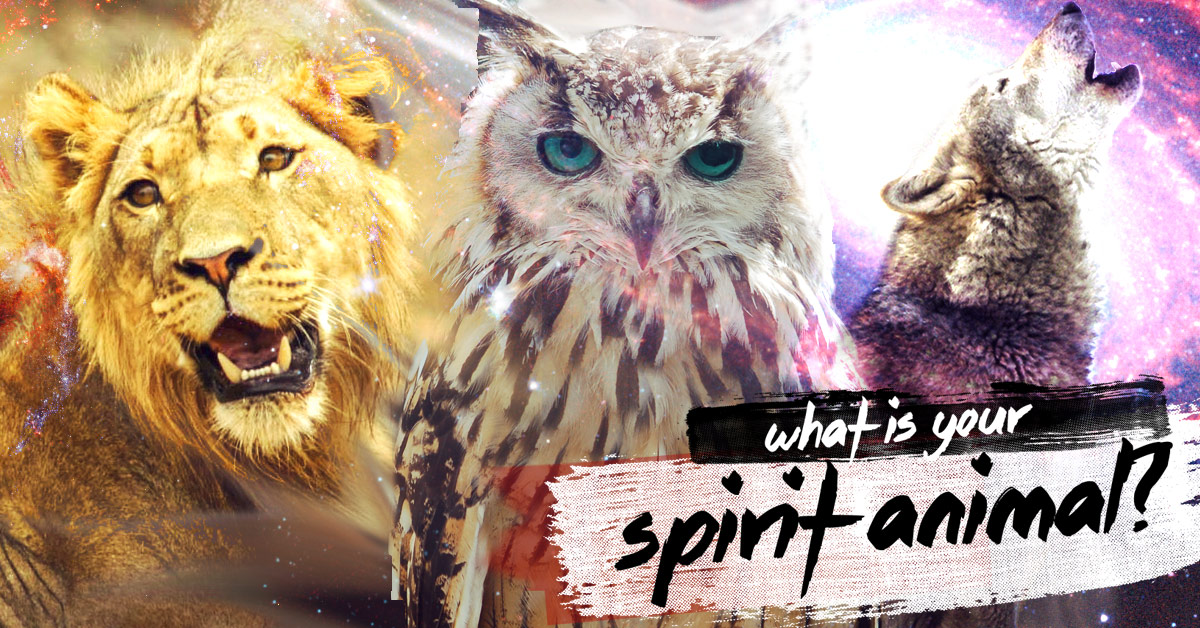 animal spirits It is shown that a one-time animal-spirit shock, modeled as an abrupt  the  connectivity of this animal-spirit trader within a social network, and the extent to  which.